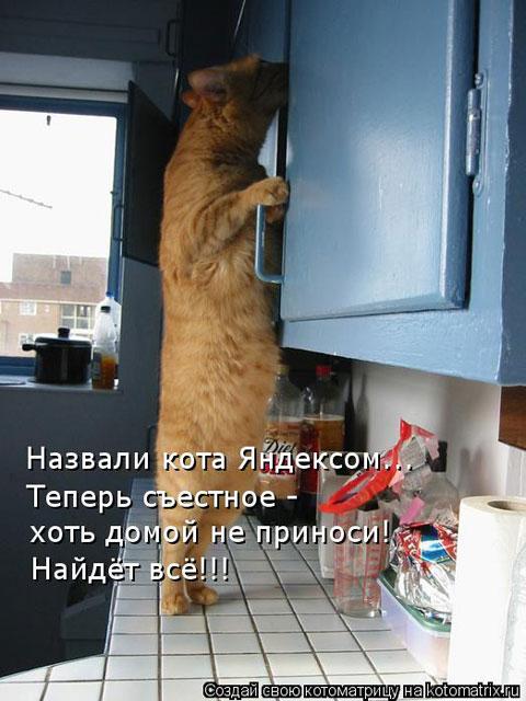 http://fotomau.ru/albums/userpics/10003/412.jpg